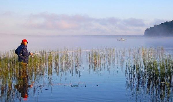 рыболовные места на павловском водохранилище